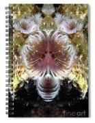 Creation 70 Spiral Notebook