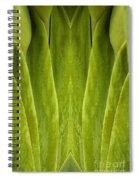 Creation 86 Spiral Notebook