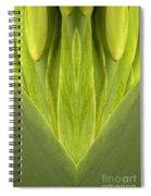 Creation 87 Spiral Notebook