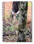 Creature Of The Forest Spiral Notebook