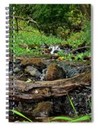 Creek End Spiral Notebook