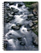 Creek Flow Panel 3 Spiral Notebook