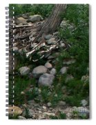 Creek Flow Panel 4 Spiral Notebook