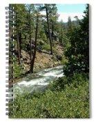 Creek Glen Alpine Creek Spiral Notebook