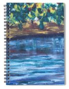 Creek In Sarasota Spiral Notebook