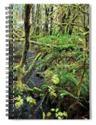 Creek In The Rain Forest Spiral Notebook