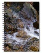 Creek Scene On Mt Tamalpais Spiral Notebook