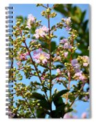 Crepe Mertle In Bloom Spiral Notebook