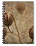Crepe Myrtle Seed Pods With Grunge And Textures Spiral Notebook