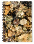 Cretaceous-tertiary Kt Extinction Event Spiral Notebook