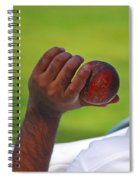 Cricket Anyone Spiral Notebook