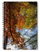 Crimson And Gold Spiral Notebook