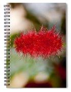Crimson Bottle Brush Spiral Notebook