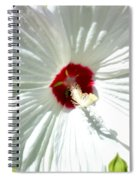 Crimson Stained Spiral Notebook