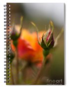 Crisp New Buds Spiral Notebook