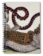 Crocodile & Snake Spiral Notebook