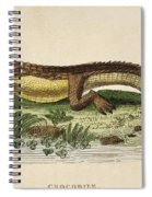 Crocodile Spiral Notebook