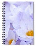 Crocus Flowers Spiral Notebook