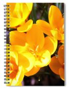 Crocuses In Yellow Spiral Notebook