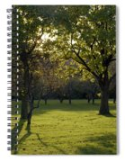 Cross In The Trees Spiral Notebook