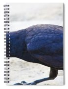 Crow Snacking Spiral Notebook