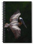 Cruising Spiral Notebook
