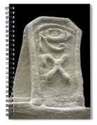 Cryptic Egypt Snow Spiral Notebook