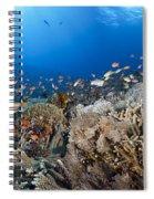 Crystal Bay Panorama Spiral Notebook