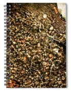 Crystal Clear Water Spiral Notebook