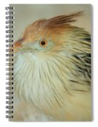 Cuckoo Bird Spiral Notebook