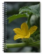 Cucumber Flower Spiral Notebook
