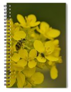 Cucumbers And Mustard Spiral Notebook