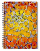 Culmination Three Spiral Notebook