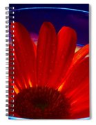 Cup O Gerber Spiral Notebook
