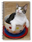 Cup O Tilly 2 Spiral Notebook
