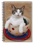 Cup O Tilly 3 Spiral Notebook