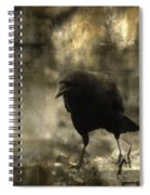 Curiosity Of The Graveyard Crow Spiral Notebook