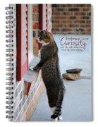 Curiosity Inspirational Cat Photograph Spiral Notebook