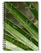 Curling Shadows Spiral Notebook