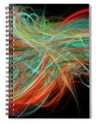 Curls Spiral Notebook