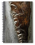 Curly Bark Of A Palm Tree Spiral Notebook