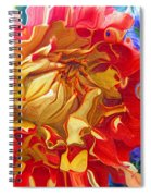 Red And Yellow Dahlia Spiral Notebook