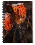 Cusp Of The Seasons Spiral Notebook