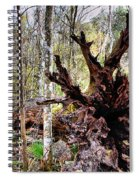 Cypress Roots Spiral Notebook