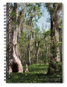 Cypress Trees And Water Hyacinth In Lake Martin Spiral Notebook