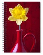 Daffodil In Red Pitcher Spiral Notebook