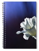 Daffodil Light Spiral Notebook
