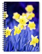 Daffodils Flowers Spiral Notebook