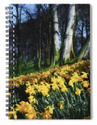 Daffodils Narcissus Flowers In A Forest Spiral Notebook