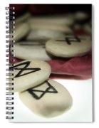 Dagaz On Mannaz Spiral Notebook